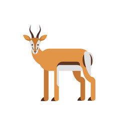 flat style of antelope vector image vector image