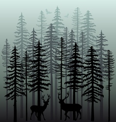 Winter forest with pine trees vector image vector image