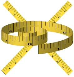 yellow tape measure vector image