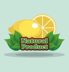 lemon natural product label vector image