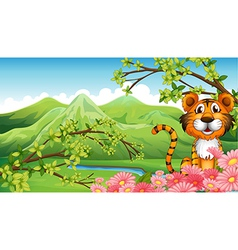 A tiger near the flowers across the mountains vector image