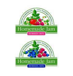 Berries Jam Label Collection vector