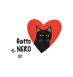 black cat greeting card for a traditional italian vector image