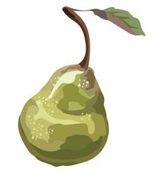 fruit-9 vector image