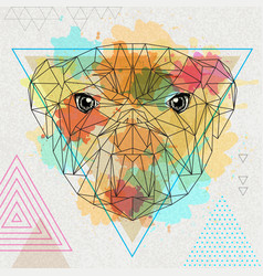 Hipster polygonal animal bulldog on artistic vector
