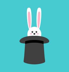 magical rabbit in hat in vector image