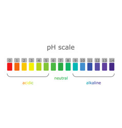Ph scale with colored labels of environments and vector
