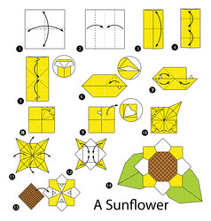 step instructions how to make origami a sunflower vector image