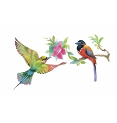Watercolor colorful Birds and butterfly with vector
