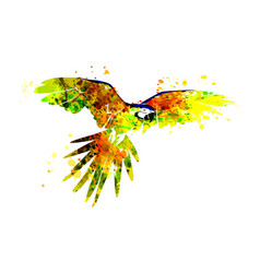 a flying parrot ara vector image