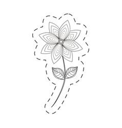 chrysantemum flower decoration cut line vector image