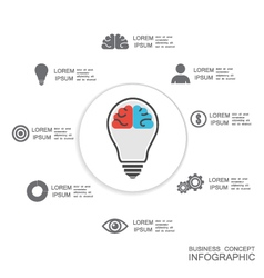 356isolated infographic vector image vector image