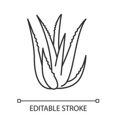 Aloe vera pixel perfect linear icon succulent vector