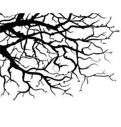 Black and white graphic drawing branches vector