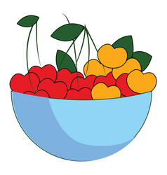 cherry bowl on white background vector image