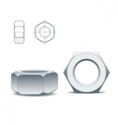 Metal nuts vector