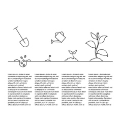 Timeline infographic of planting tree process vector image