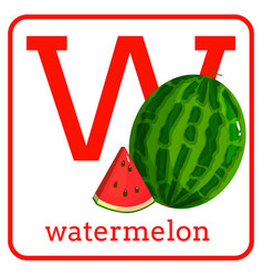 An alphabet with cute fruits letter w watermelon vector