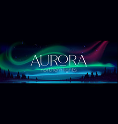 Aurora borealis poster northern lights vector