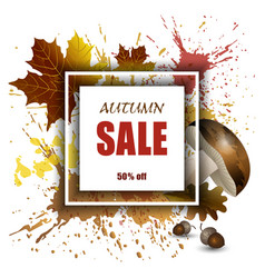 autumn sale vector image