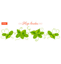 Border of leaves and cones of hops plant isolated vector