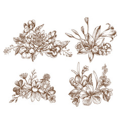 Collection of hand drawn autumn flowers vector