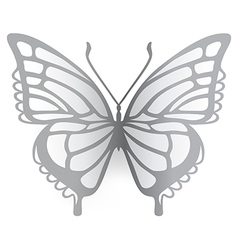 Colored butterfly logo vector