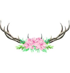 deer horn on white background vector image