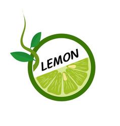 Lemon fruit icons flat style vector