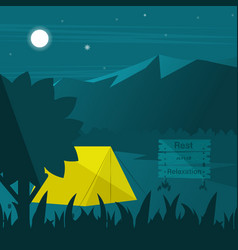 summer night in the woods vector image