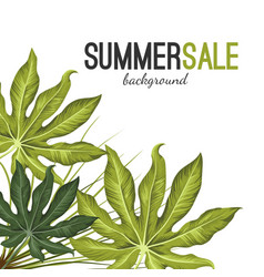summer sale background with green tropical exotic vector image