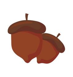 Delicious hazelnut on white background vector