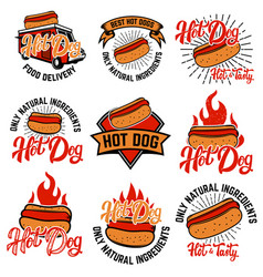hot dog labels handwritten lettering logo label vector image