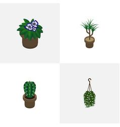 Isometric plant set of peyote flowerpot vector