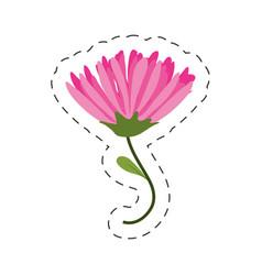 pink flower spring image cut line vector image