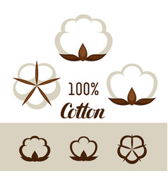 set of cotton icons emblems for clothing and vector image