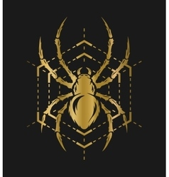 Golden spider and web vector image vector image