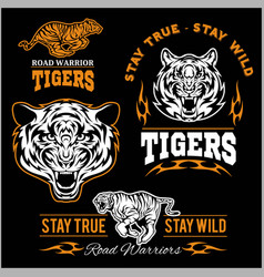set of tiger themed sport logo vector image