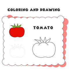 coloring and drawing book element tomato tomato vector image