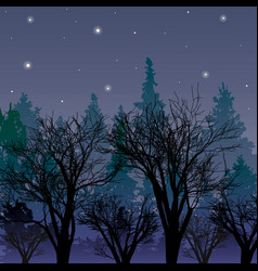 Forest at dusk landscape with the first stars vector