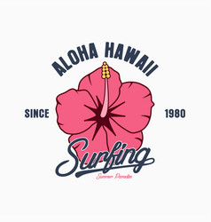 hawaii surf vector image