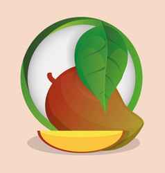 Mango with leaves natural badge vector