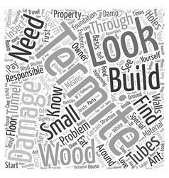 Termite Damage Word Cloud Concept vector image