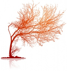 Traced tree vector