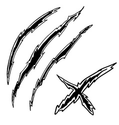 Dragon or monster claws vector image
