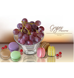 grapes fruit and macaroons realistic 3d vector image