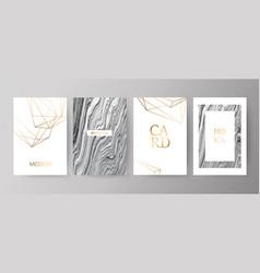 set modern elegant brochure card background vector image