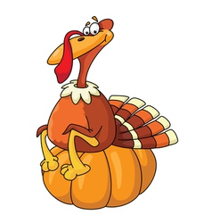 Turkey on pumpkin vector