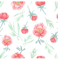 watercolor hand draw red peony seamless pattern vector image
