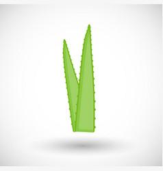 Aloe vera plant flat icon vector